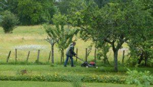 Jardinier cluny