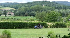 Entretien de jardin Prissé